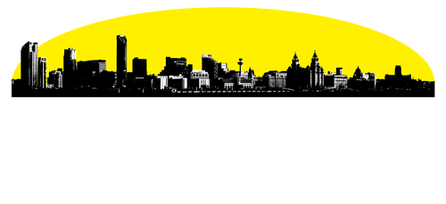 Skyline Roofing Amp Building Services